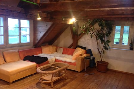 Very charming attic apartment with lake view - Leilighet