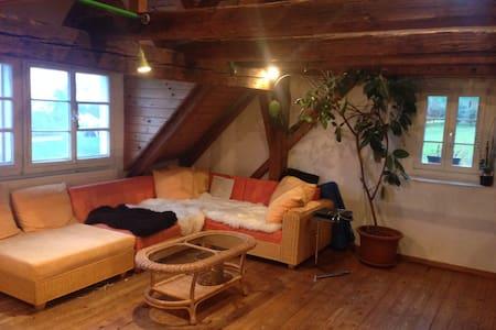Sehr charmante Dachstock Wohnung mit Seesicht - Wohnung