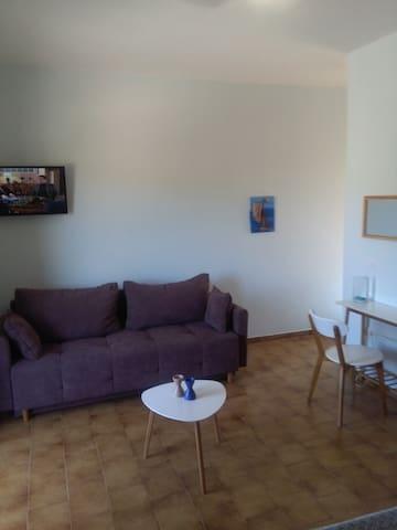 big room-bedroom (sofa double bed)