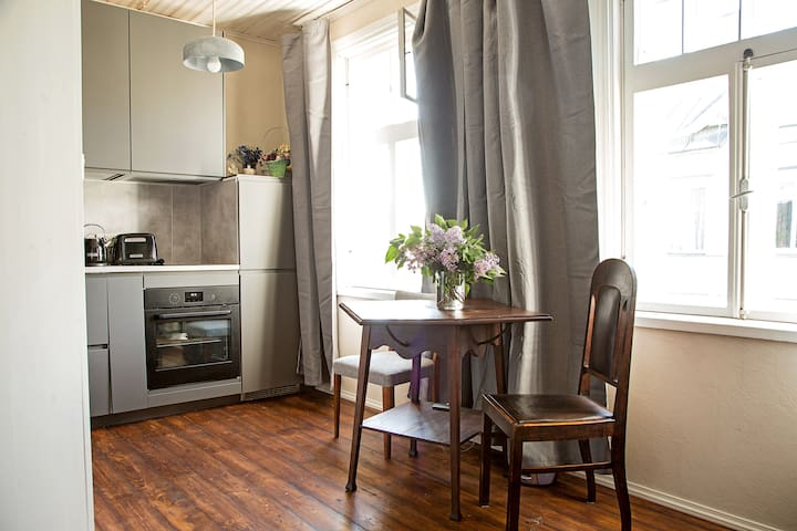 Comfortable appartment in central Tallinn