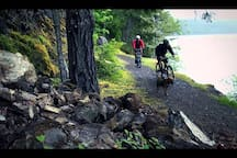 Spruce Railroad Trail on Lake Crescent