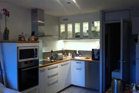 Appartement 2 pièces refait à neuf plein sud - Saint-Martin-de-Belleville - Apartment