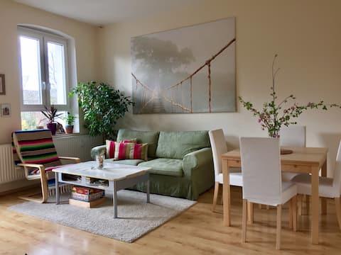 Gemütliches Zuhause in centrale Lage Flensburgs