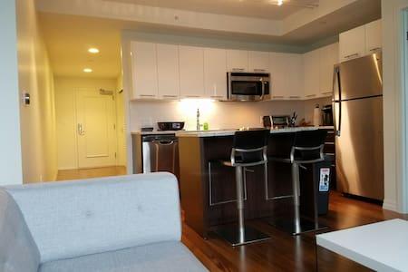 Incredible Apartment - Boston - Apartment