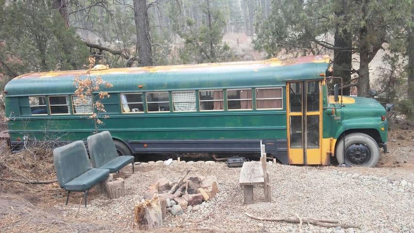 Rustic Cozy Bus - Pagosa Springs - Kulübe