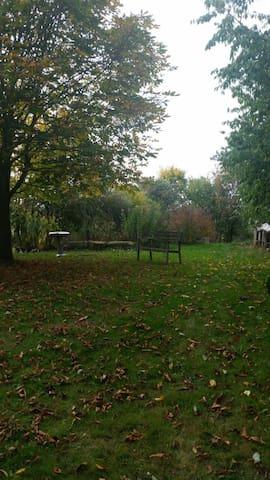 Unser Garten im Herbst - Our garden in autumn