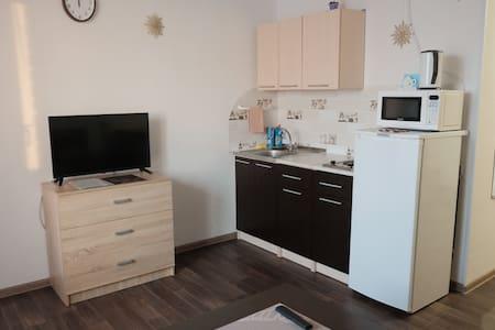 Квартира-студия для гостей в новом районе города