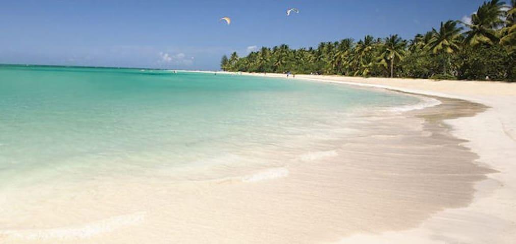 Oceanfront Luxury  Apt @ Balcones Del Atlantico