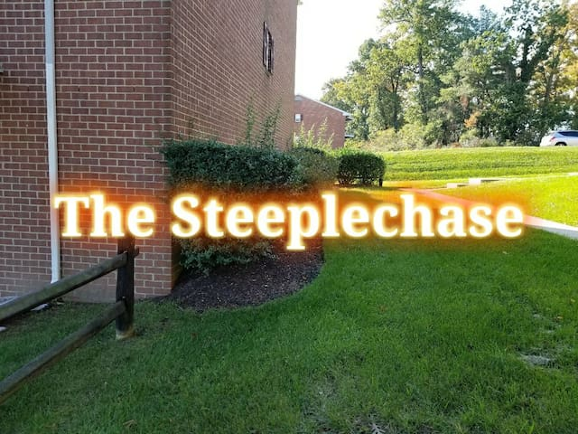 The Staycation Station-The Steeplechase