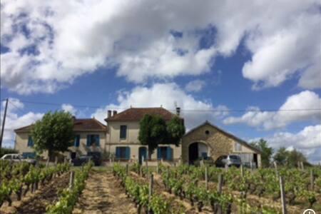 Chambre dans loft au cœur d'un domaine viticole