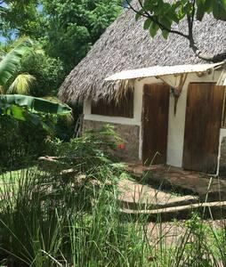 Nice Hut. El Zopilote permaculture farm/hostel - El Madroñal
