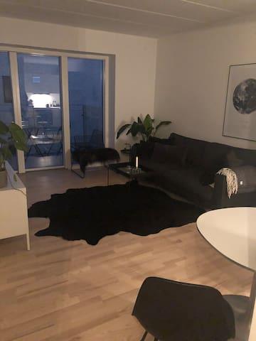 2-værelses nybygget lejlighed med stor altan