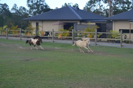 Farm stay close to theme parks - Maudsland