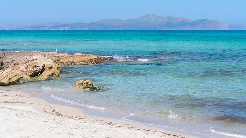 La mejor situacion delante el mar! - Can Picafort - Appartamento