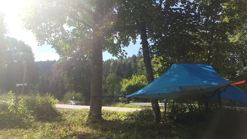 Camping Erlebnis im Schwarzwald Privatgrundstück