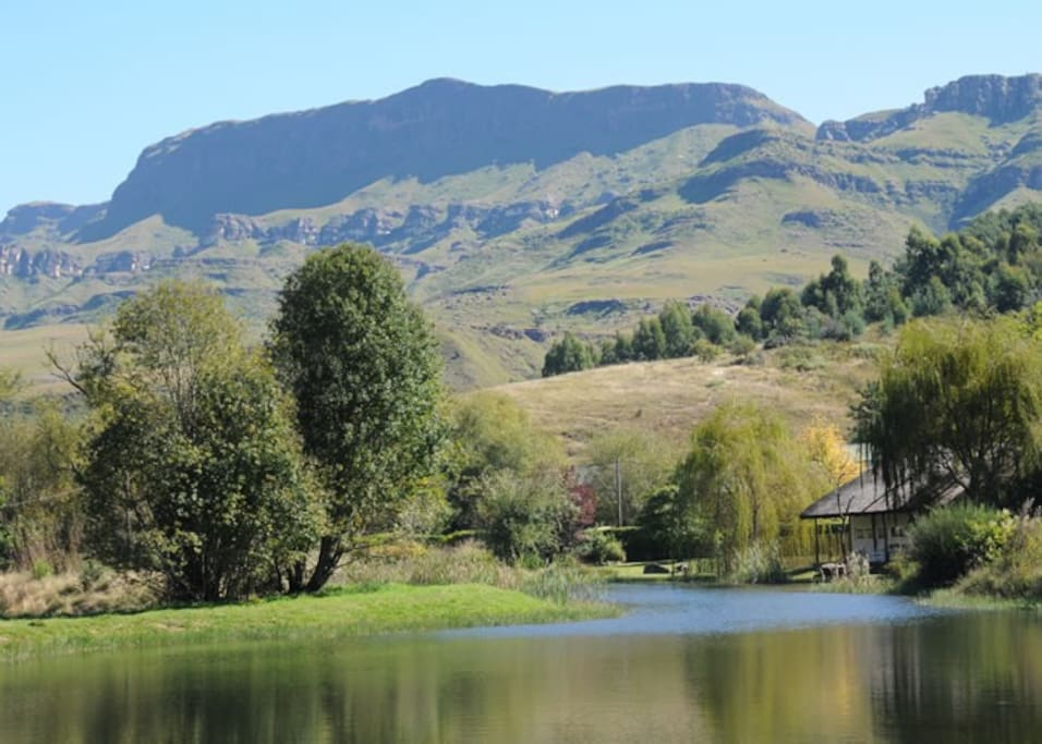 Coot Cottage - Mountain and Lake Views