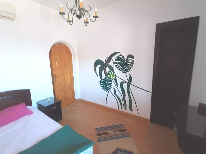 Manta House ... Tropical