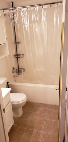 1100sqft fuly furnished private basement apartment