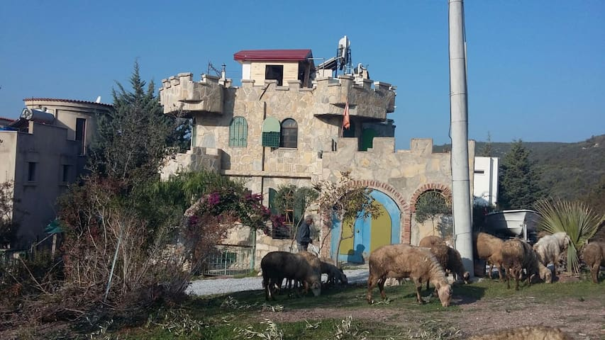 Kale Villa - Meşelik Milas - Casa
