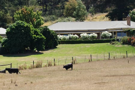 """Willowbank"" - Bed and Breakfast - Yarra Glen - 家庭式旅館"