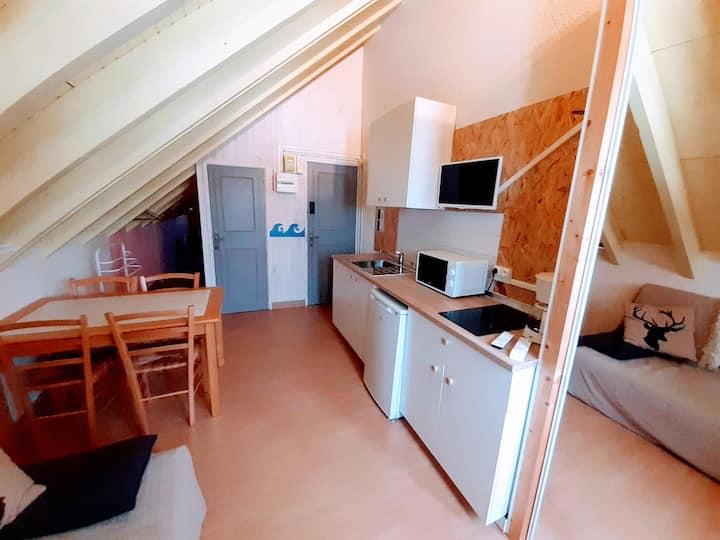 Appartement au coeur de Guzet Neige