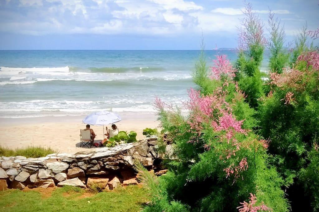 Vista de la playa desde el jardín