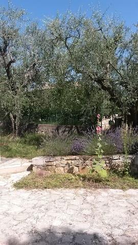 2 rooms flat + garden + car space Valbonne/Grasse