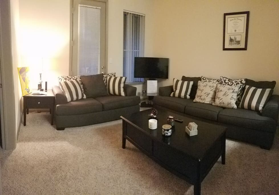 Couch, Love Seat, and Queen Size Air Mattress Available