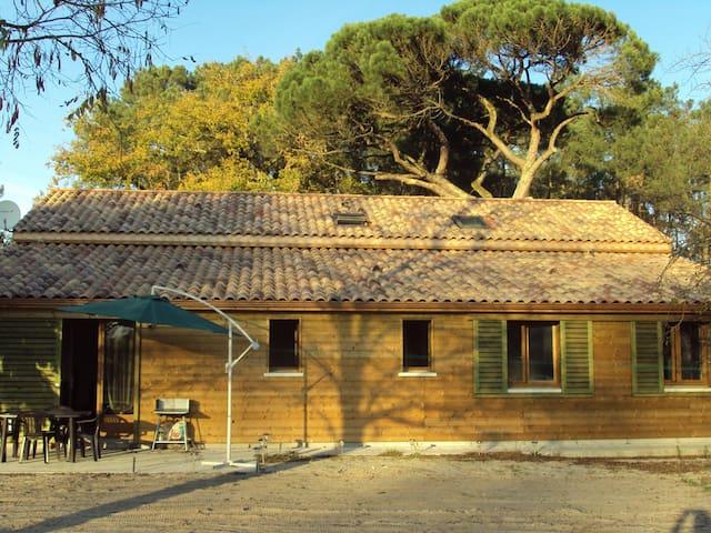 GITE BUZET A ANZEX - Casteljaloux - Lägenhet