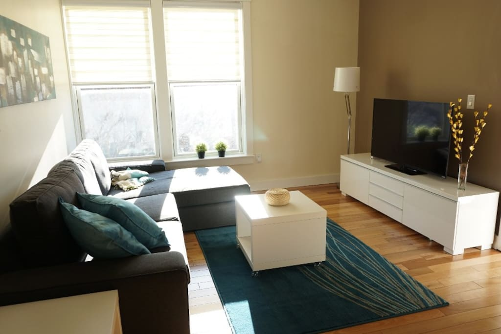 Living room with 50 inch smart HDTV and Bluray.