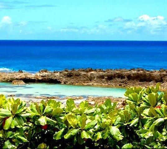 A Tropical  Hideaway