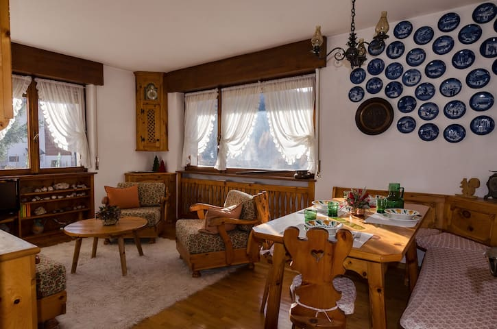 Apartment Overlooking the Dolomite - 6 beds - terrace and WIFI
