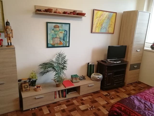 Cosy furnished flat near the river and city centre