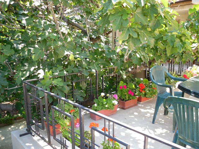 """Holiday House """"The Old Sozopol"""" - Sozopol - Guesthouse"""