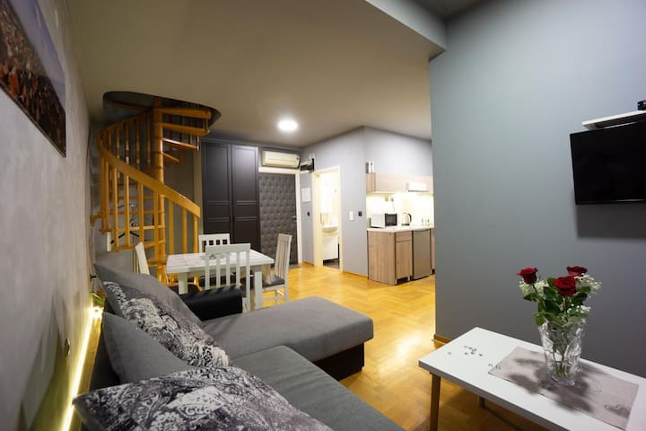 Apartman ALEKSEI 14, spacious 2 bedroom apartment