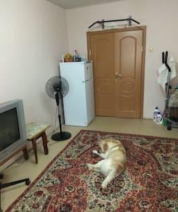Уютная квартира проспект Добровольського, 87