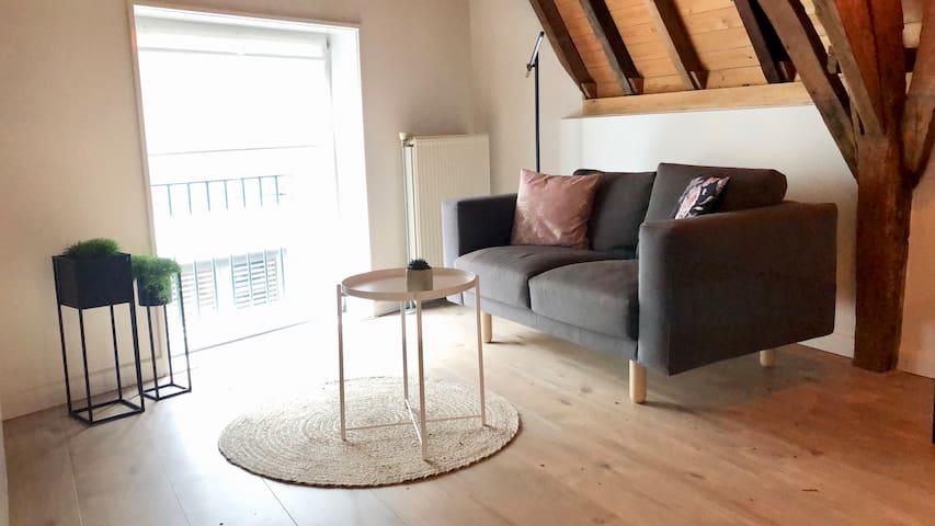 Sfeervol appartement midden in centrum Nijmegen