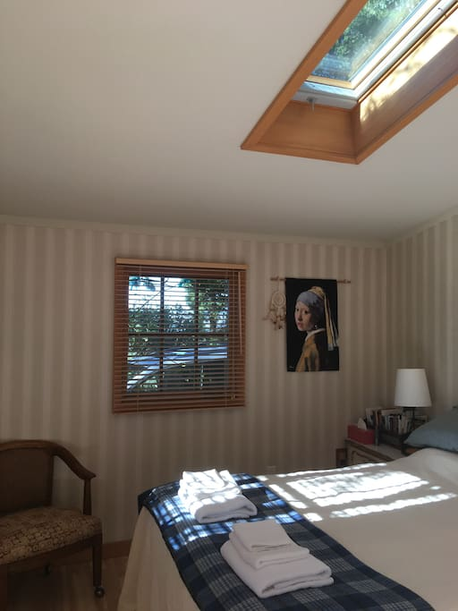 Different angle, bedroom # 1, with skylight