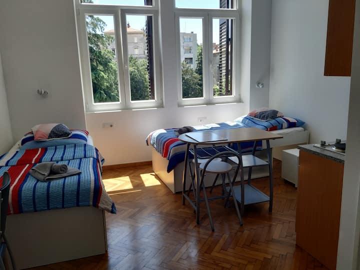 Bright Studio Apartment city center S-3