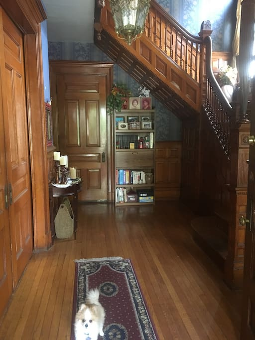 Front Entrance into foyer, which leads to upstairs apartment.  Original pocket doors, house built in the late 1800's. Lots of original wood work thru-out our home. That is Chupi, one of our dogs who, w/Eli, small poodle, will b at door to greet you.