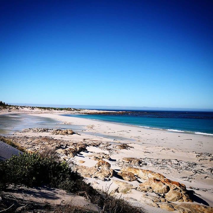 Wonderful Ocean Flat