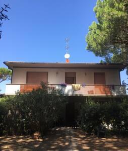 Casa nella pineta - Roccamare - Wohnung