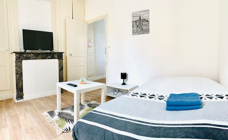 APPARTEMENT HYPER CENTRE TRAM 1 MIN A PIED