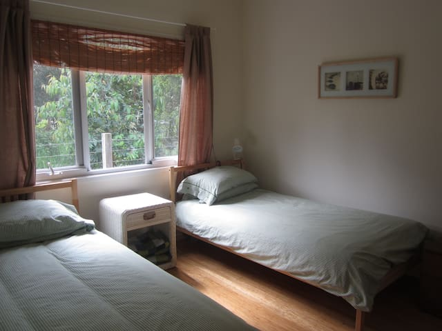 Two comfy single beds