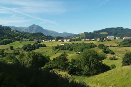 Disfruta  de San Sebastián y descansa en Altzo - Altzo