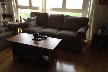 Comfy pull out couch or sofa bed!! - Appartement