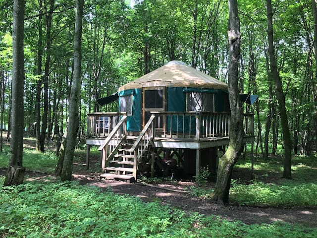 Treehouse Yurt w/ Modern Amenities