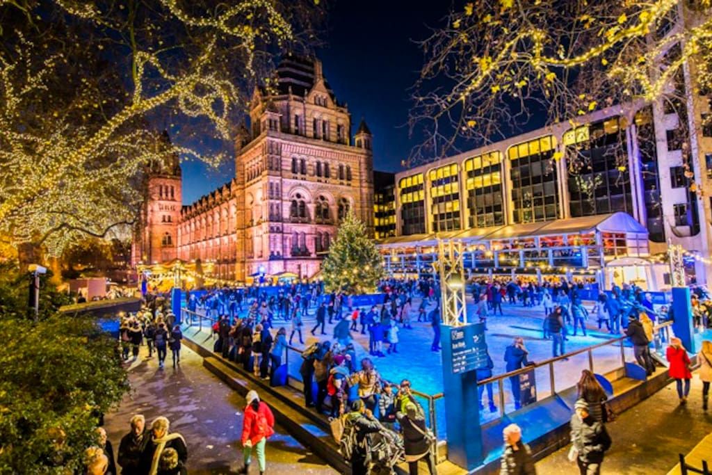 Plenty of national and international events take place in the neighborhood, throughout the year as with the Christmas Ice Rink (Natural History Museum) or the BBC Proms in September (Royal Albert Hall)