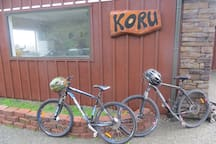 Complimentary mountain bikes