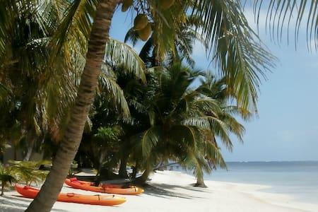 Free WiFi, kayaks, bikes & PADI certified!